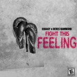SHAGGY-2013-video-BERESHAMMOND-FIGHTTHISFEELING